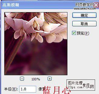 PS调色教程:把绿色花朵调成紫色