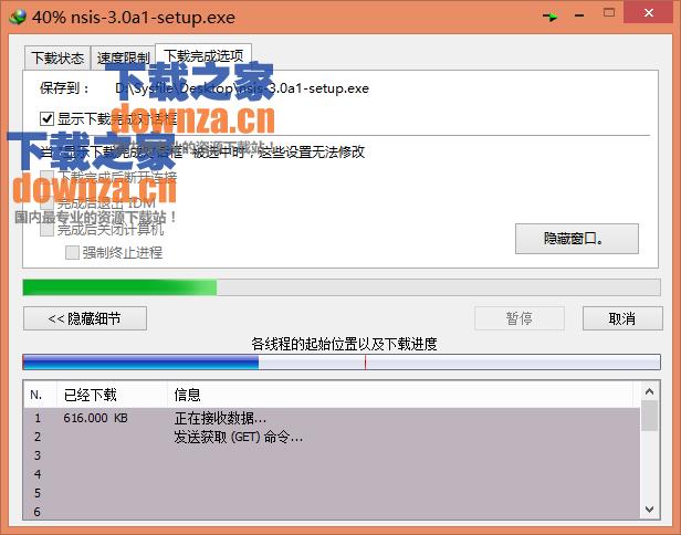 Internet Download Manager(IDM)
