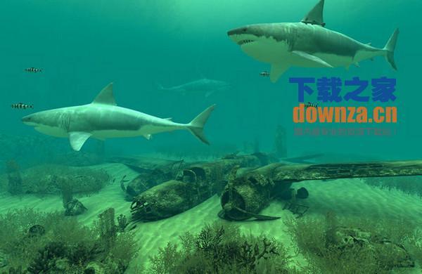 壁纸 动物 海底 海底世界