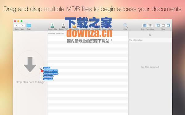 MDB Explorer for mac截图