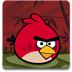 愤怒的小鸟龙年版