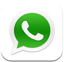 WhatsApp Messenger聊天软件安卓版