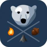 冬季北极熊